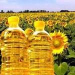 Падение цен на масло может серьезно пошатнуть позиции гривны